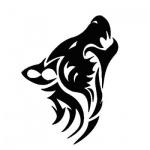 Logo SilverFox Creative Studios
